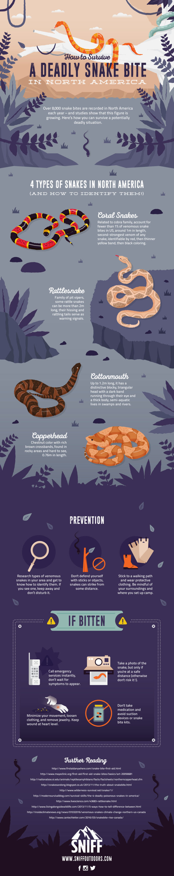 How You Can Prevent (and Treat!) Venomous Snake Bites